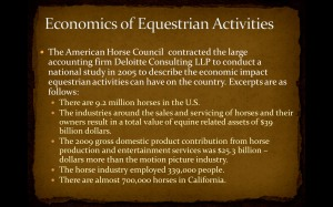 equestrian12