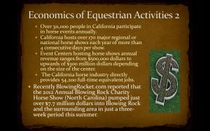 equestrian13