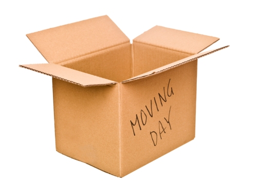 Cardboard box marked Moving Day