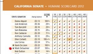 DeSaulnier Scorecard